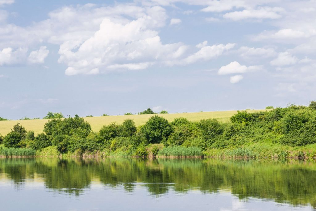 Weekend perfect in mijlocul naturii la Padurea Cernica – gratar, distractie si aer liber!, Charmy