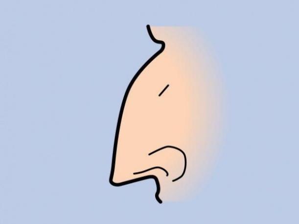 SENZATIONAL: Metoda INFAILIBILA de citire a CARACTERULUI unei persoane in functie de forma nasului!, Charmy