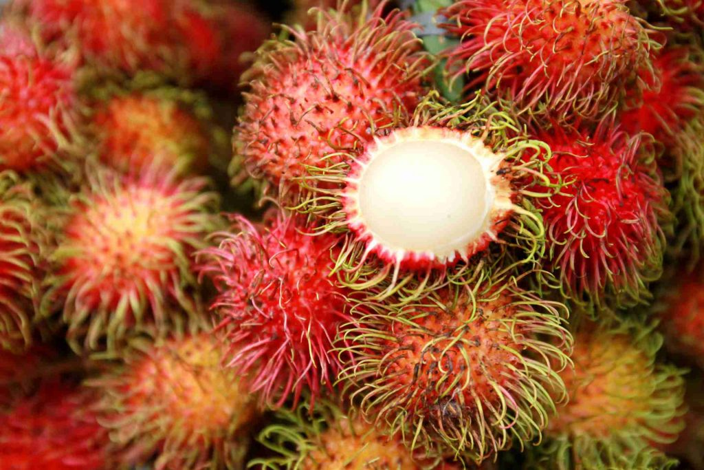 Rambutan, fructul-minune ce previne formele de cancer si trateaza diabetul zaharat, Charmy