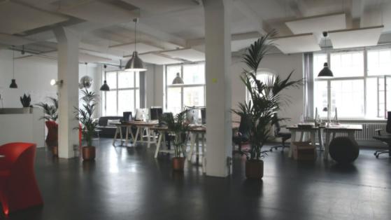 Cum se aleg corect spaţiile pentru birouri de închiriat?, Charmy